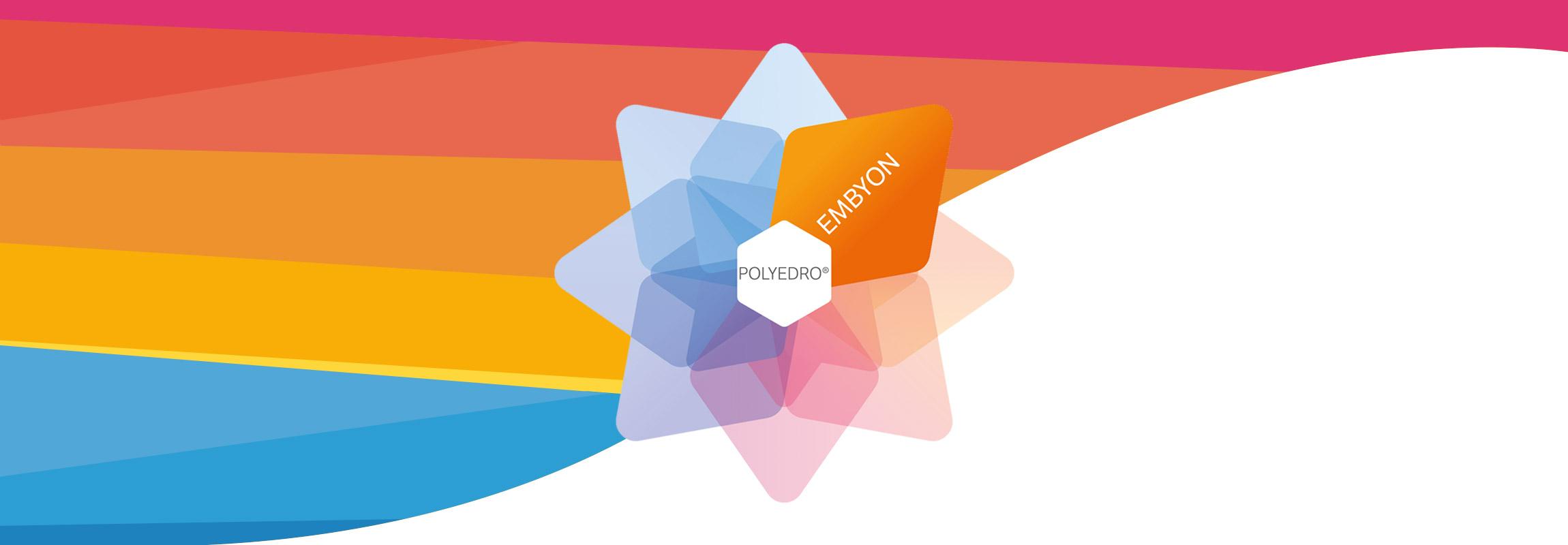 Embyon, su piattaforma Polyedro, è una soluzione modulare perfetta per lo sviluppo di Software Gestionali flessibili.